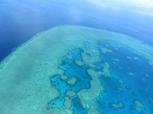 La gran barreral de coral