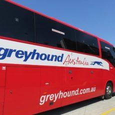 Australia – ¿Cómo utilizar el pase de autobús hop on hop off de Greyhound?