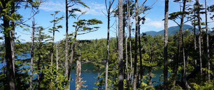 5 días en Vancouver Island