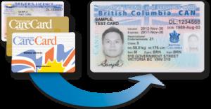 BC ID