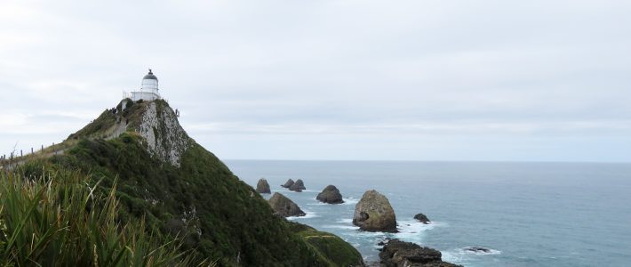 The Catlins: Nugget Point – Surat Bay – Jack´s blowhole – Purakaunui Falls