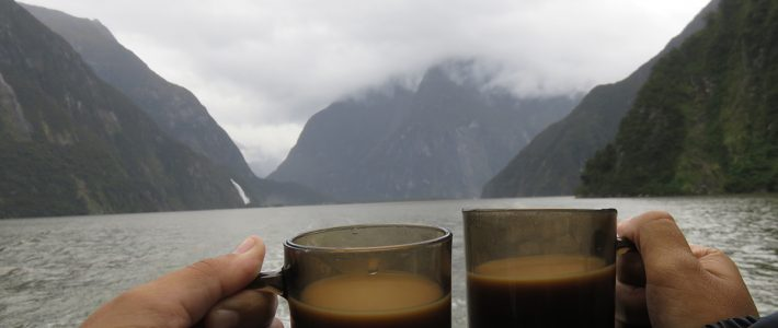 Milford Sound – The Chasm