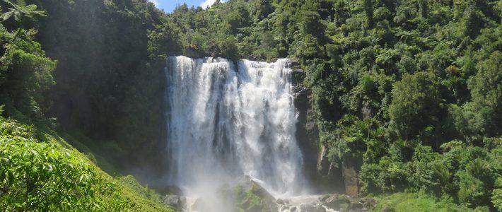 Waitomo caves –Mangapohue natural bridge – Marokopa falls – Taupo